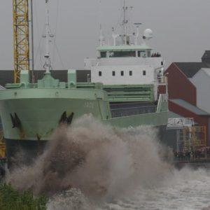 exeborg-010