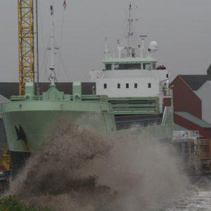 exeborg-011
